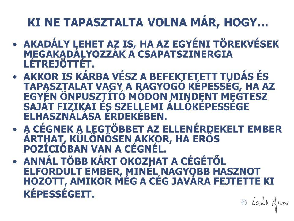 © MEKKORA A MUNKAERŐ GAZDASÁGI TÁRSADALMI ÉRTÉKE CÉGE SZÁMÁRA.