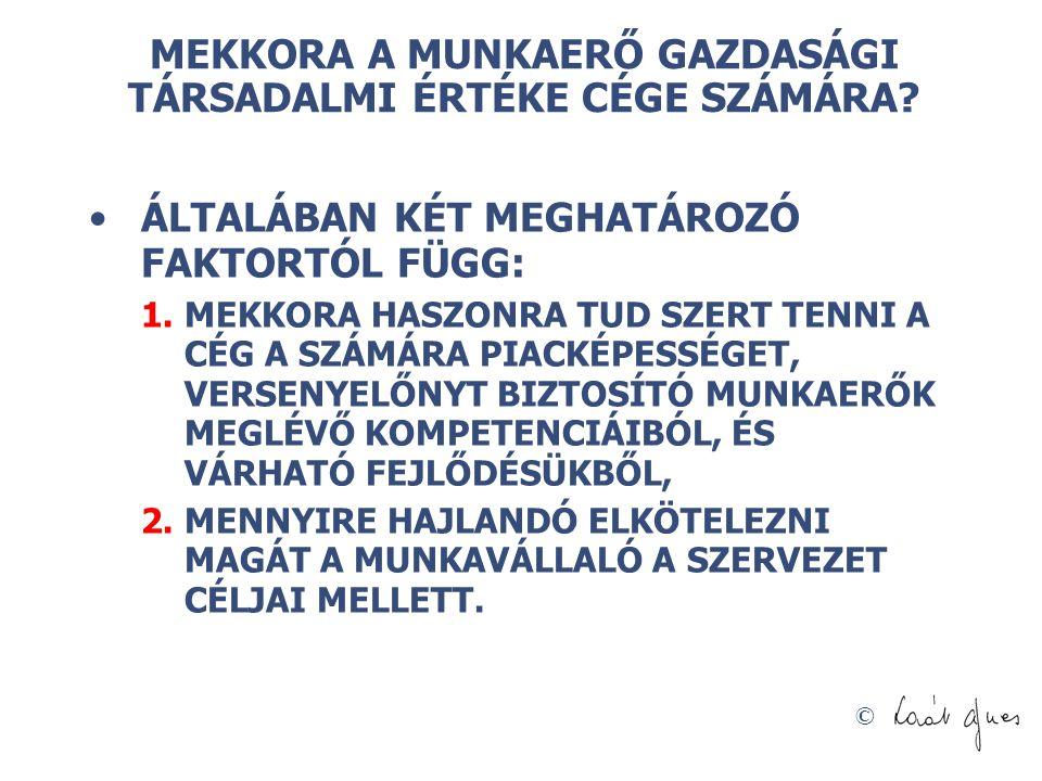 © NYELVTUDÁS MÉRLEG HASZNOSÍTÁS ESETÉN NYELVÉRZÉK, MINT TŐKEPOTENCIÁL 100 FORRÁSOK ESZKÖZÖK FORRÁSOK FELEDÉSBE MENT NYELVTUDÁS, MINT VESZTESÉG - 60 ESZKÖZÖK HASZNOSÍTOTT NYELVTUDÁS, MINT KOMPETENCIA 100 HASZNOSÍTOTT NYELVTUDÁS, MINT KOMPETENCIA 40 NYELVÉRZÉK, MINT TŐKEPOTENCIÁL 100 NYELVTUDÁS MÉRLEG RÉSZLEGES HASZNOSÍTÁS ESETÉN NYELVTUDÁS MÉRLEG HASZNOSÍTÁS NÉLKÜL NYELVÉRZÉK, MINT TŐKEPOTENCIÁL 100 FORRÁSOK ESZKÖZÖK SZUNNYADÓ SZELLEMI TŐKE - 100 HASZNOSÍTOTT NYELVTUDÁS, MINT KOMPETENCIA 0