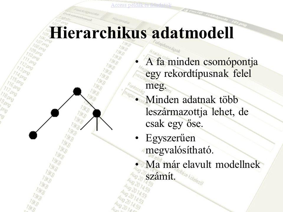 Hierarchikus adatmodell •A fa minden csomópontja egy rekordtípusnak felel meg. •Minden adatnak több leszármazottja lehet, de csak egy őse. •Egyszerűen