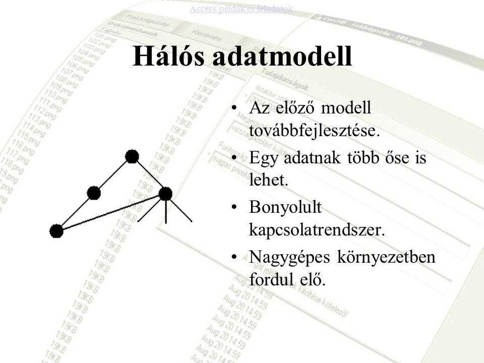 Hálós adatmodell •Az előző modell továbbfejlesztése. •Egy adatnak több őse is lehet. •Bonyolult kapcsolatrendszer. •Nagygépes környezetben fordul elő.