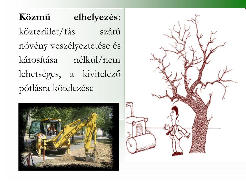Közmű elhelyezés: közterület/fás szárú növény veszélyeztetése és károsítása nélkül/nem lehetséges, a kivitelező pótlásra kötelezése