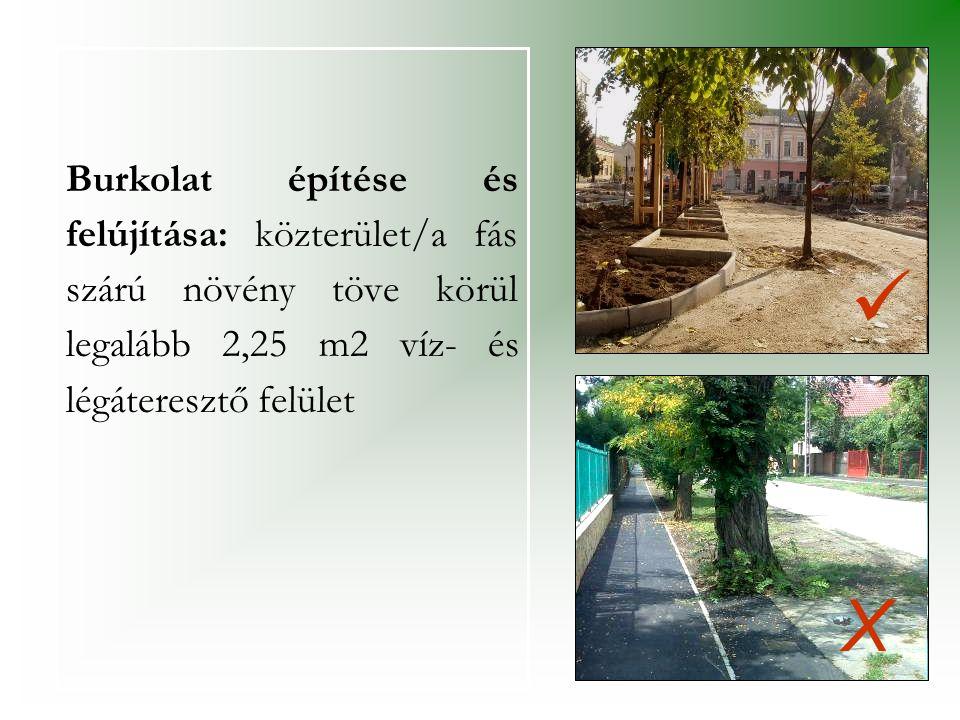 Burkolat építése és felújítása: közterület/a fás szárú növény töve körül legalább 2,25 m2 víz- és légáteresztő felület   X
