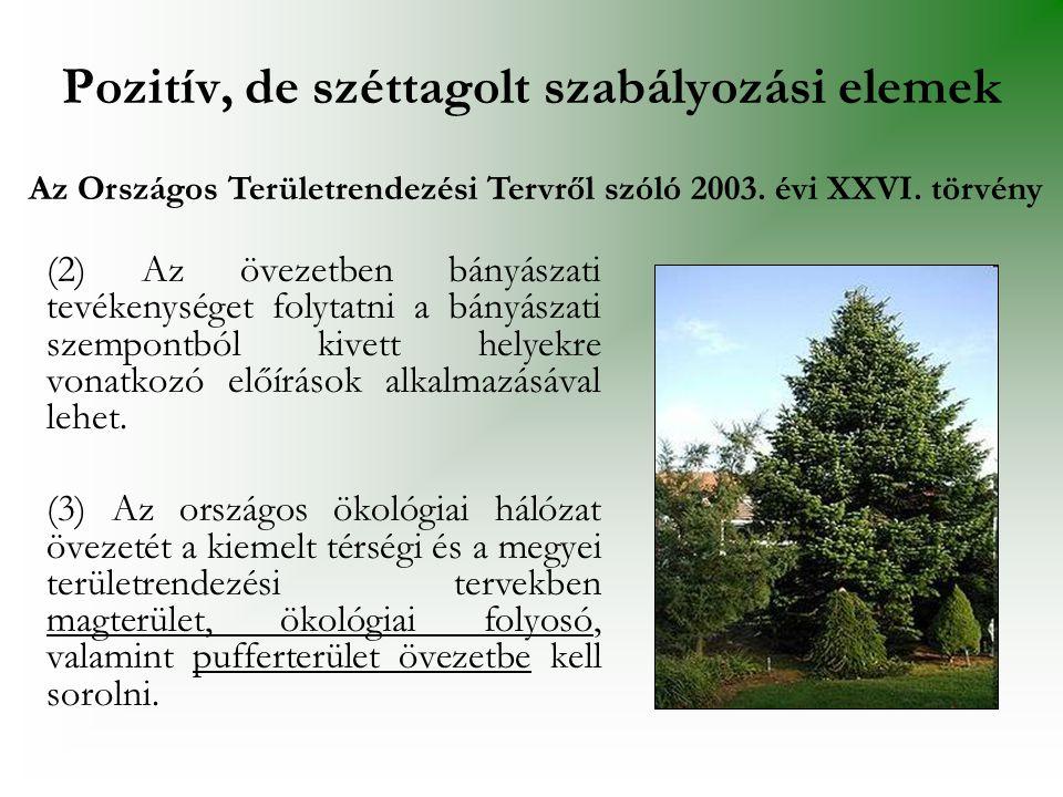 A település zöldfelületi rendszere 9.