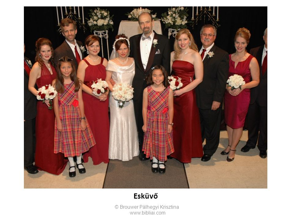 Esküvő © Brouwer Pálhegyi Krisztina ∙www.bibliai.com