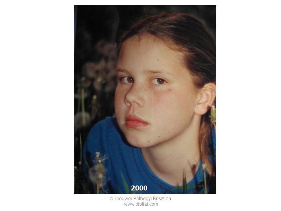 © Brouwer Pálhegyi Krisztina ∙www.bibliai.com 2000