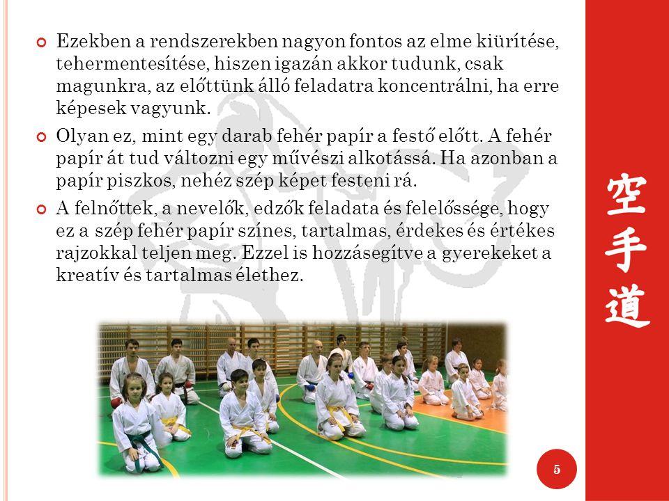 A harcművészetek értékes közösségeket hoznak létre, világosan meghatározzák a hovatartozást (pl.