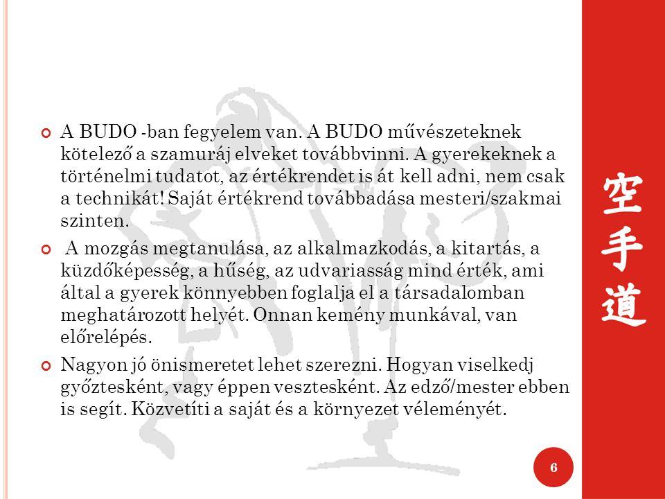 A BUDO -ban fegyelem van.A BUDO művészeteknek kötelező a szamuráj elveket továbbvinni.