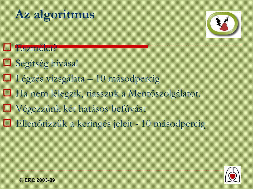 © ERC 2003-09 Az algoritmus  Eszmélet.  Segítség hívása.