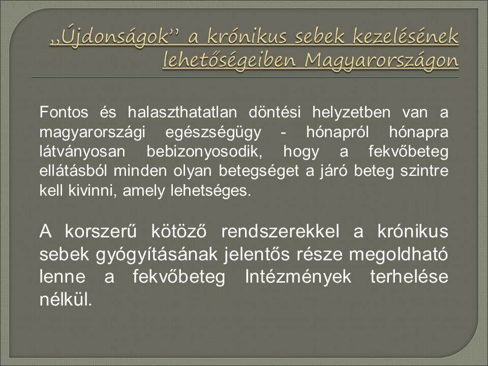 Fontos és halaszthatatlan döntési helyzetben van a magyarországi egészségügy - hónapról hónapra látványosan bebizonyosodik, hogy a fekvőbeteg ellátásb