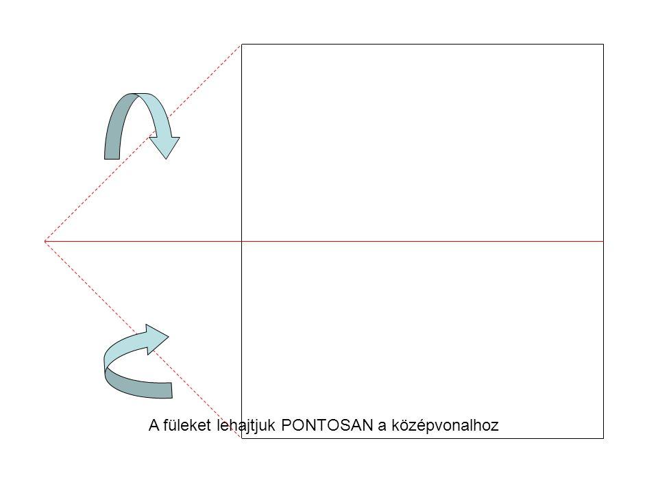 A füleket lehajtjuk PONTOSAN a középvonalhoz