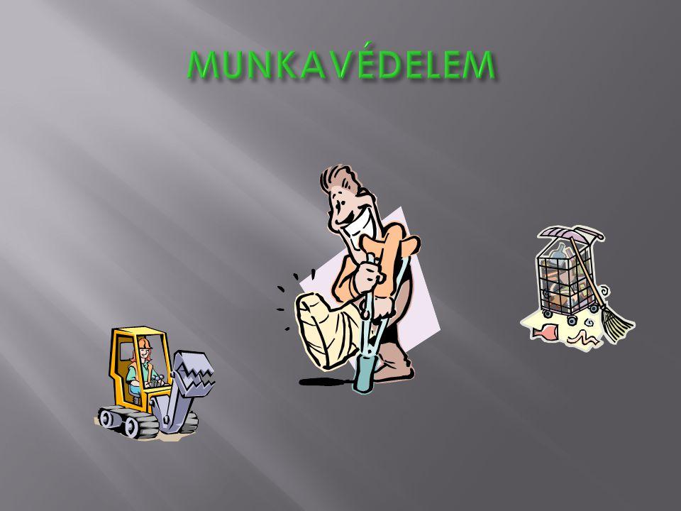 Törvények, kormány és miniszteri rendeletek:  A Munka Törvénykönyve (MT) 1992.