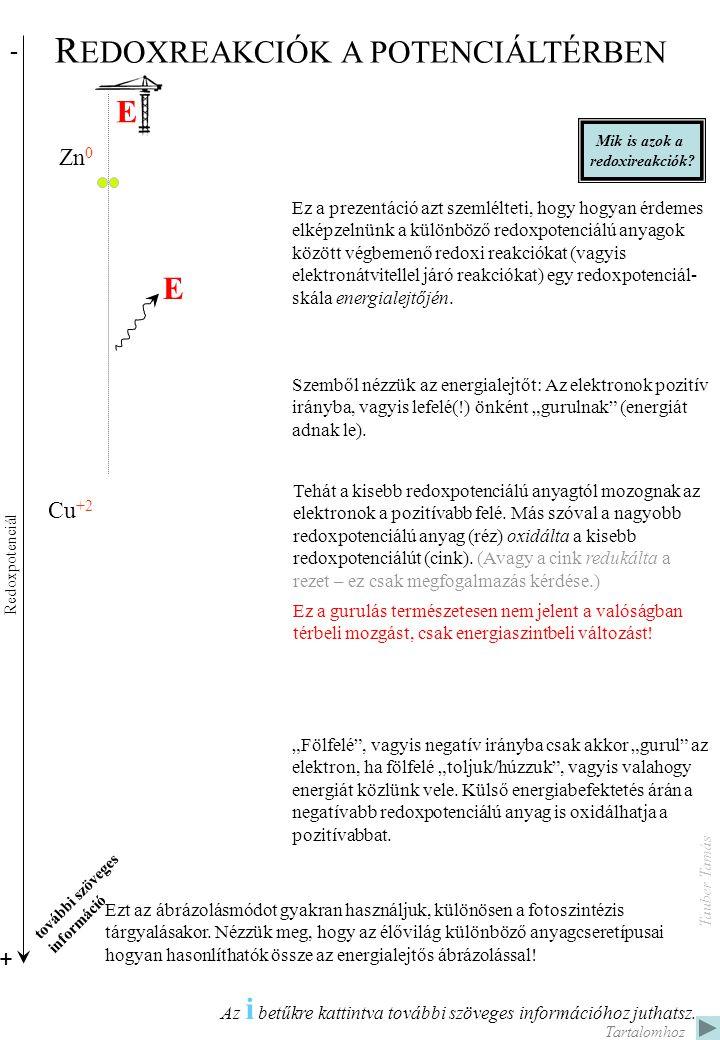 Zn 0 Zn +2 S -2 S +6 H 0 H +1 + 6 O 2 O: 0 C: +1 C: 0 C: -1 6 CO 2 + 6 H 2 O C: +2; O: -2 + Hőenergia ADP + Pi ADP~P (ATP) Kémiai energia - C 0 C +2 O -2 O 0 C 0 C +2 O -2 O 0 Redoxpotenciál 4H 2 + SO 4 2- 4H 2 O + H 2 S H: 0 S: +6; ADP + Pi ADP~P (ATP) Kémiai energia Glükóz kémiai égése (oxidációja) Glükóz biológiai égése (aerob légzés során) Hidrogén biológiai égése (oxidációja) anaerob szulfátlégzés során.