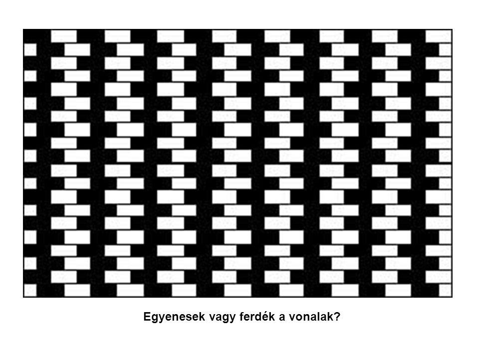 Egyenesek vagy ferdék a vonalak?