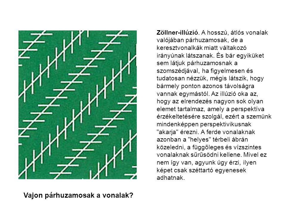 Zöllner-illúzió.