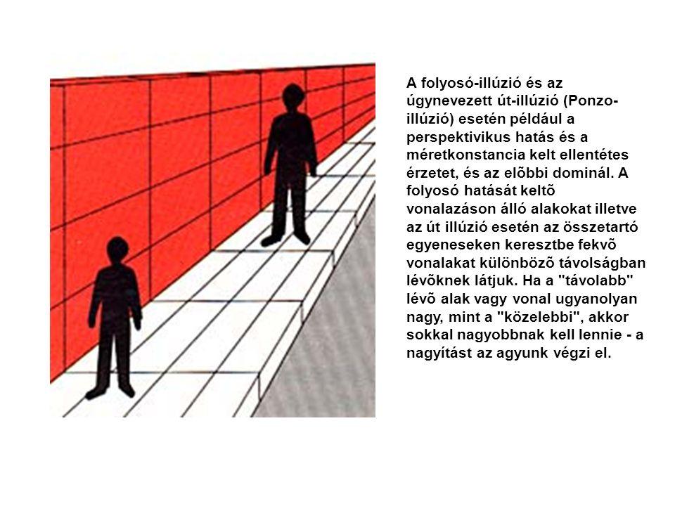 A folyosó-illúzió és az úgynevezett út-illúzió (Ponzo- illúzió) esetén például a perspektivikus hatás és a méretkonstancia kelt ellentétes érzetet, és az elõbbi dominál.