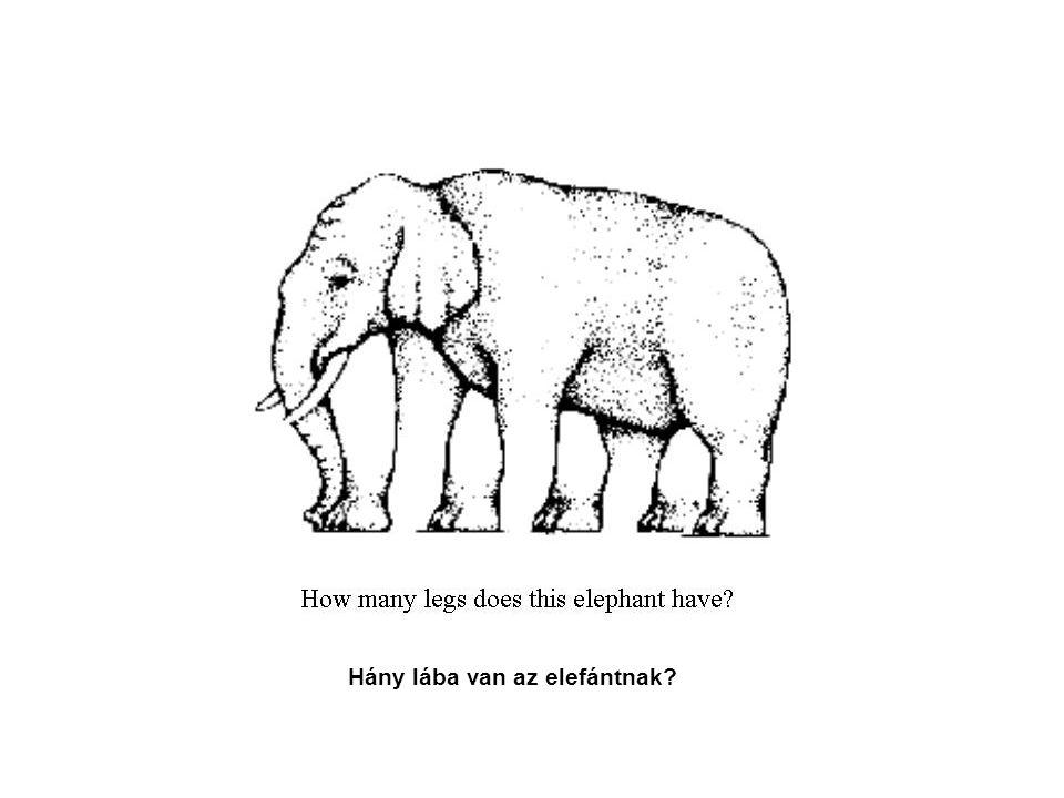 Hány lába van az elefántnak?