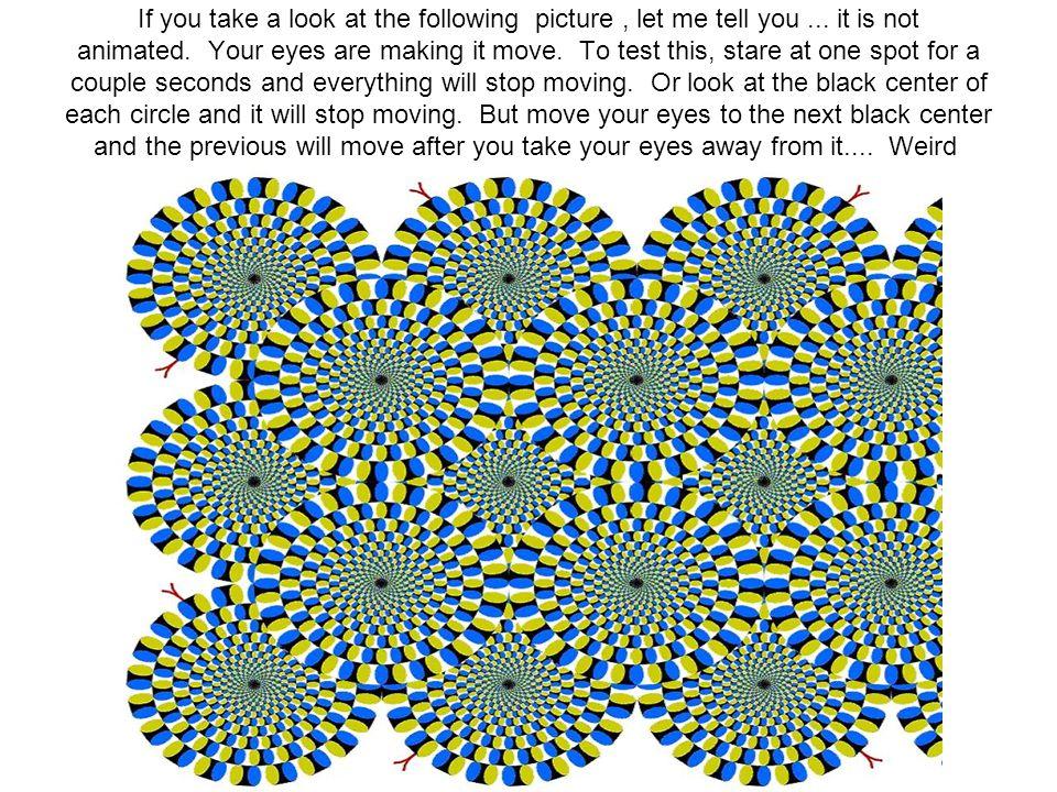 Látod a köröket? Egy kör sincs! Ez csak illúzió!
