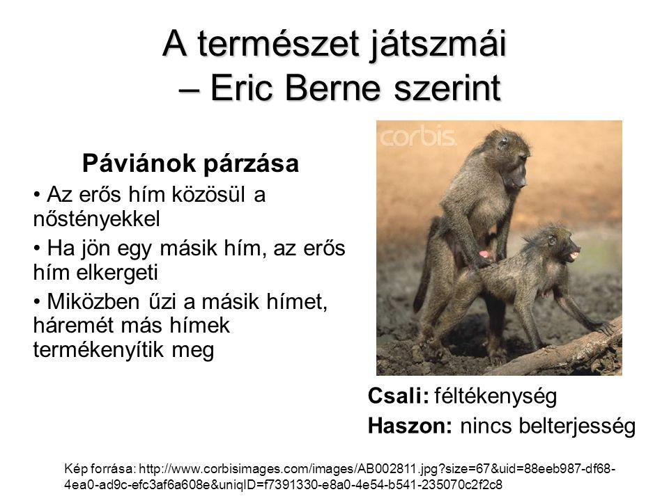 A természet játszmái – Eric Berne szerint Páviánok párzása • Az erős hím közösül a nőstényekkel • Ha jön egy másik hím, az erős hím elkergeti • Miközb