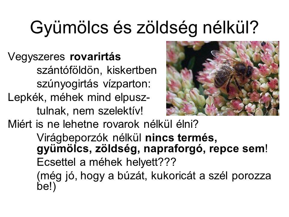 Gyümölcs és zöldség nélkül? Vegyszeres rovarirtás szántóföldön, kiskertben szúnyogirtás vízparton: Lepkék, méhek mind elpusz- tulnak, nem szelektív! M