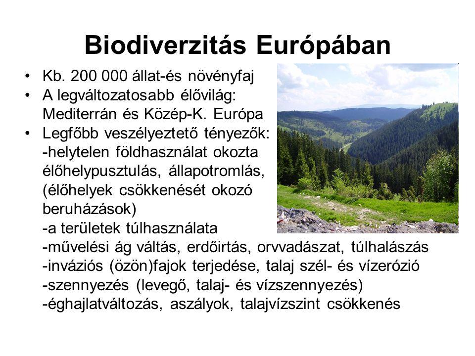 Biodiverzitás Európában •Kb. 200 000 állat-és növényfaj •A legváltozatosabb élővilág: Mediterrán és Közép-K. Európa •Legfőbb veszélyeztető tényezők: -