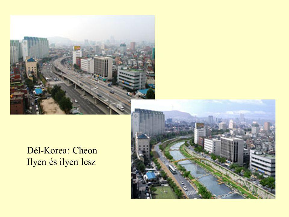 Dél-Korea: Cheon Ilyen és ilyen lesz