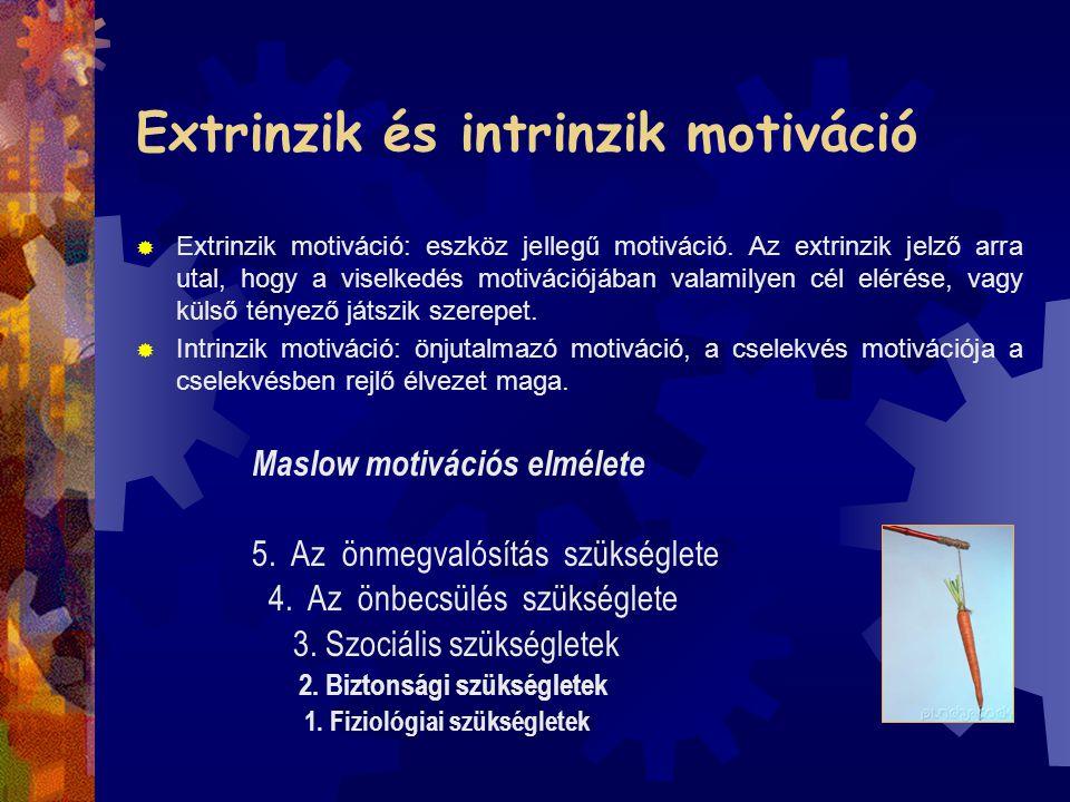 Extrinzik és intrinzik motiváció  Extrinzik motiváció: eszköz jellegű motiváció. Az extrinzik jelző arra utal, hogy a viselkedés motivációjában valam