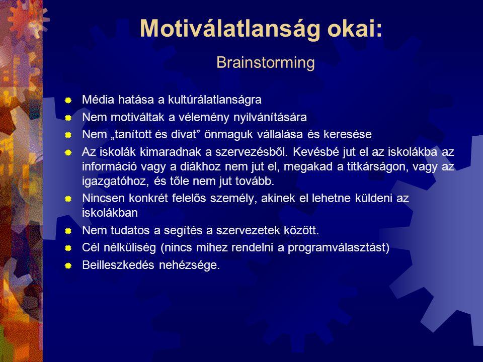 """Motiválatlanság okai: Brainstorming  Média hatása a kultúrálatlanságra  Nem motiváltak a vélemény nyilvánítására  Nem """"tanított és divat"""" önmaguk v"""