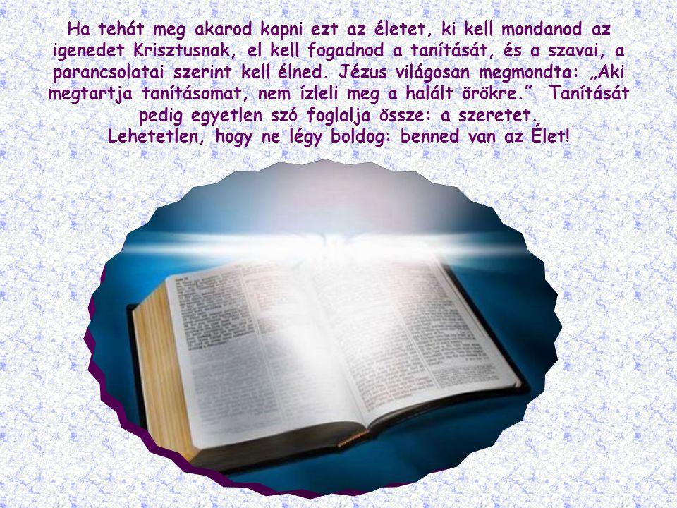 A hit nagyon fontos, elengedhetetlen feltétel: nemcsak abban áll, hogy elfogadod a Krisztus által hirdetett igazságot, hanem, hogy egész lényeddel követed is azt.
