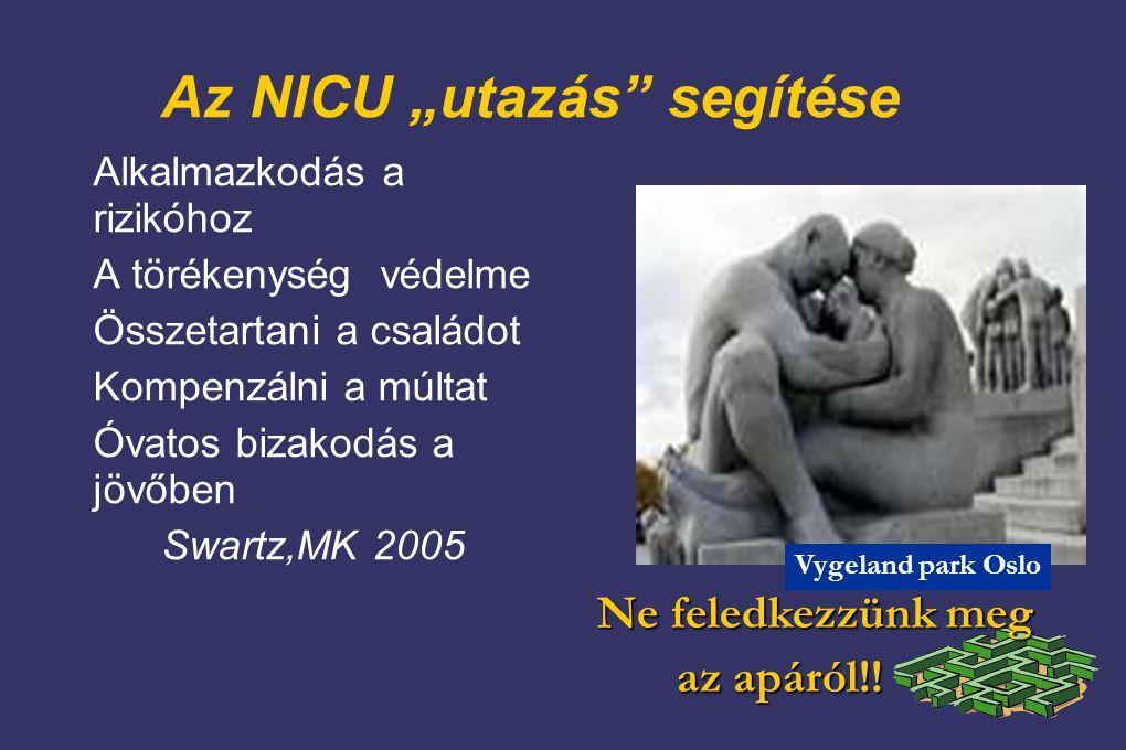 """Az NICU """"utazás segítése Alkalmazkodás a rizikóhoz A törékenység védelme Összetartani a családot Kompenzálni a múltat Óvatos bizakodás a jövőben Swartz,MK 2005 Ne feledkezzünk meg Ne feledkezzünk meg az apáról!."""