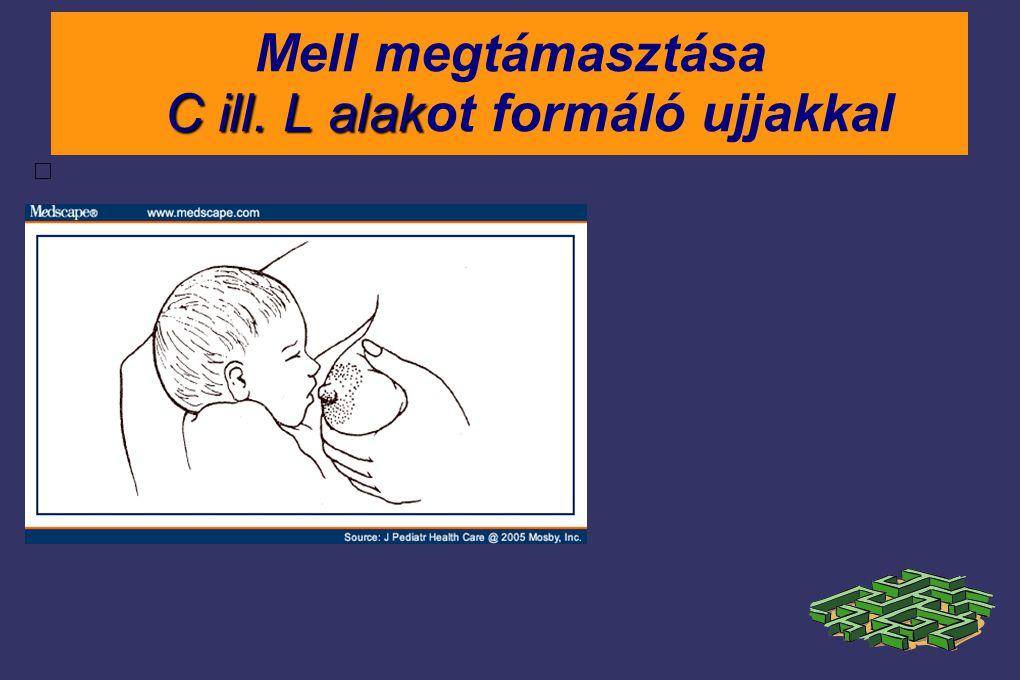 C ill. L alak Mell megtámasztása C ill. L alakot formáló ujjakkal  