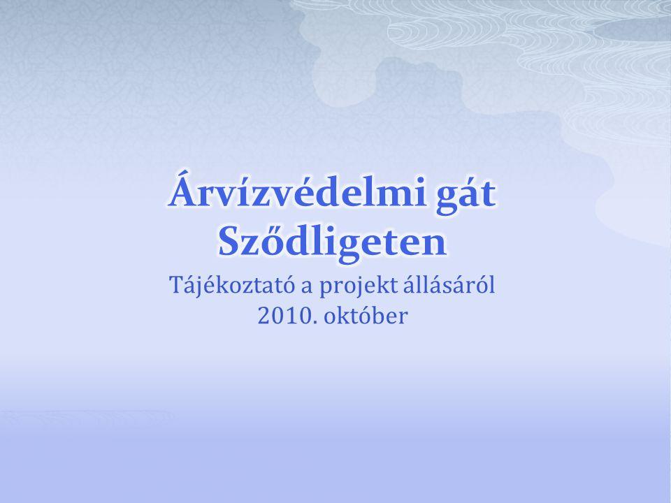 Tájékoztató a projekt állásáról 2010. október