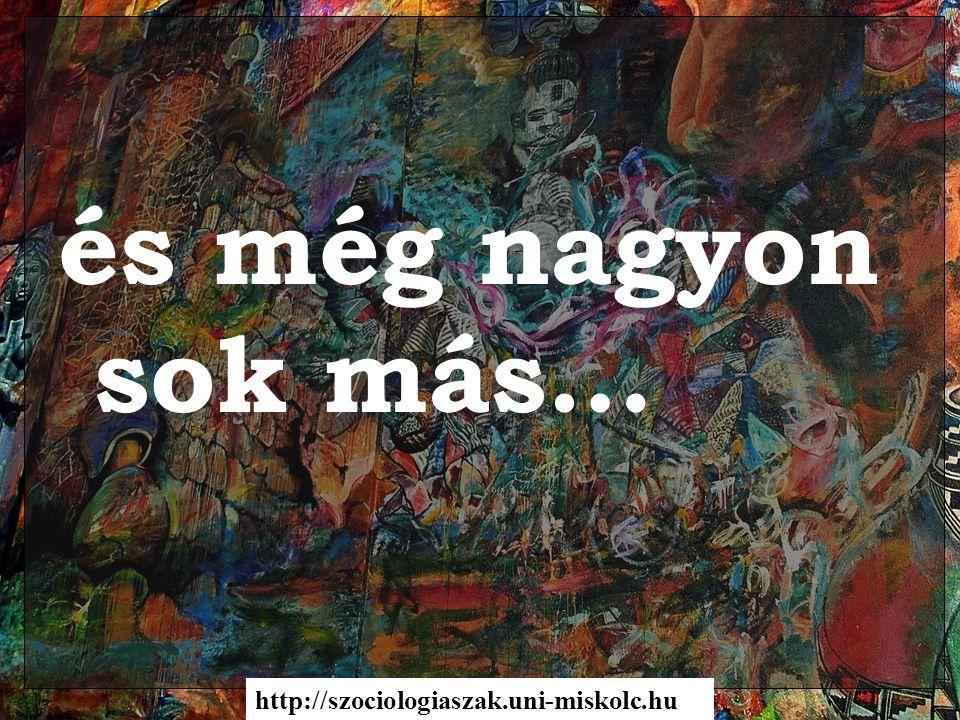 és még nagyon sok más… http://szociologiaszak.uni-miskolc.hu