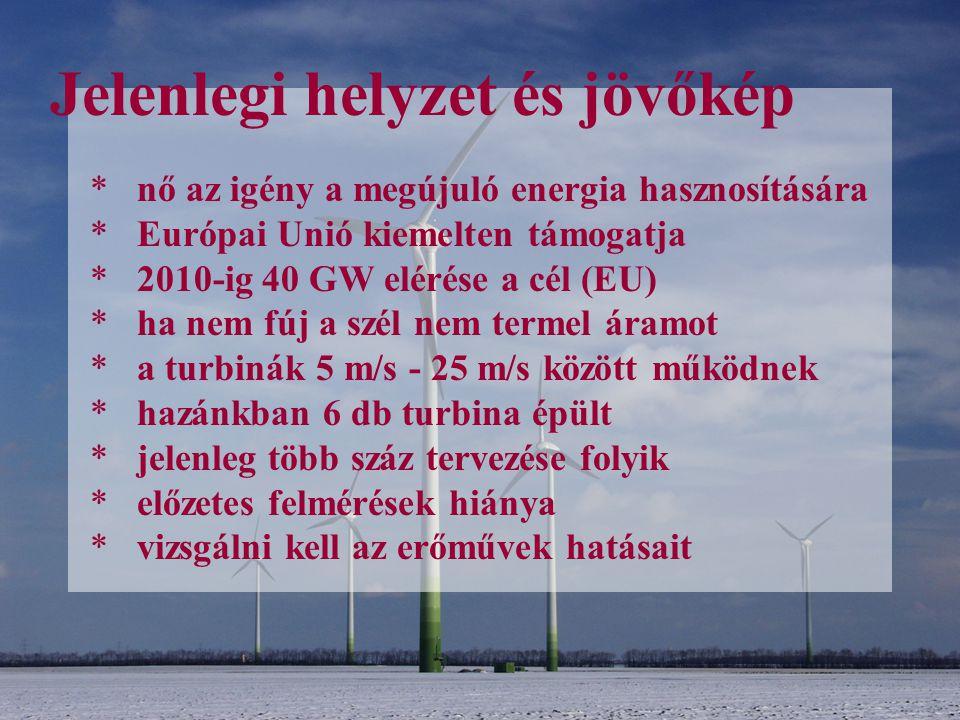 Jelenlegi helyzet és jövőkép * nő az igény a megújuló energia hasznosítására * Európai Unió kiemelten támogatja * 2010-ig 40 GW elérése a cél (EU) * h