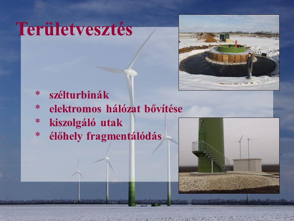 Területvesztés * szélturbinák * elektromos hálózat bővítése * kiszolgáló utak * élőhely fragmentálódás