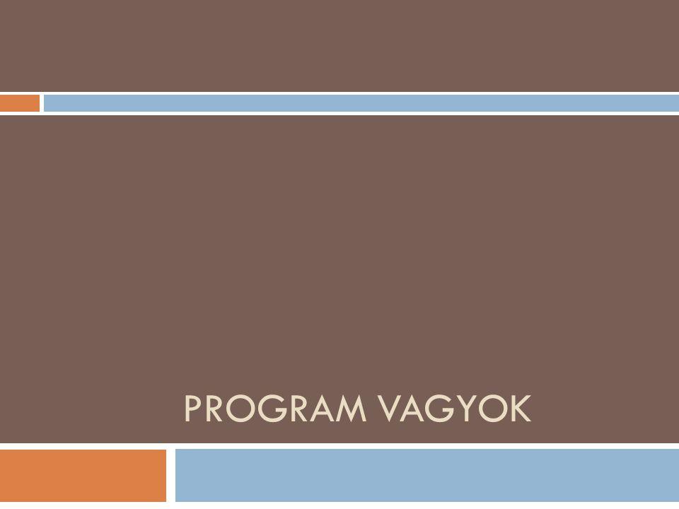 PROGRAM VAGYOK