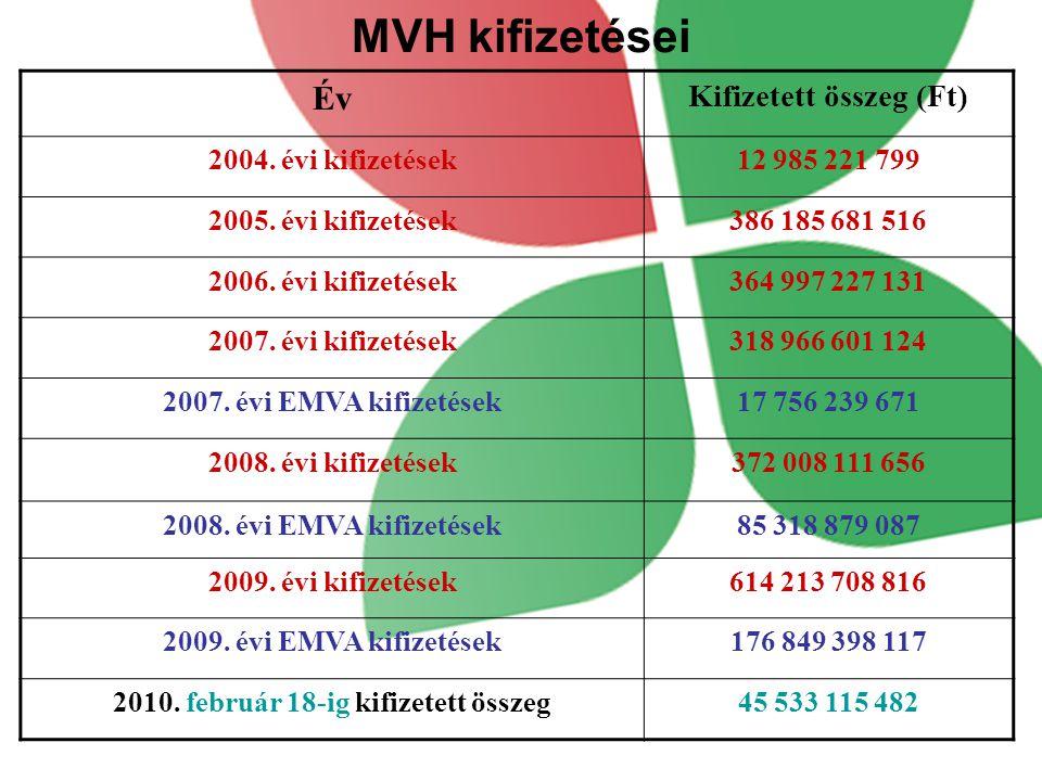 MVH kifizetései Év Kifizetett összeg (Ft) 2004.évi kifizetések12 985 221 799 2005.