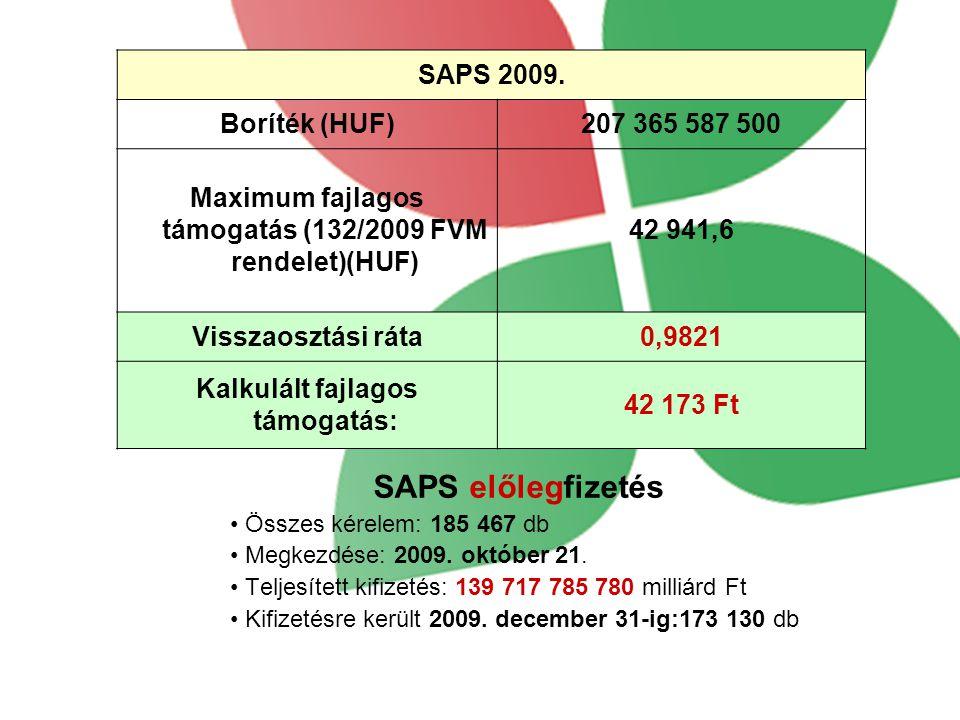 SAPS 2009.