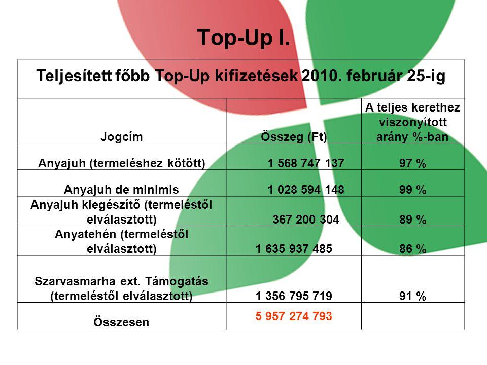 Top-Up I.Teljesített főbb Top-Up kifizetések 2010.