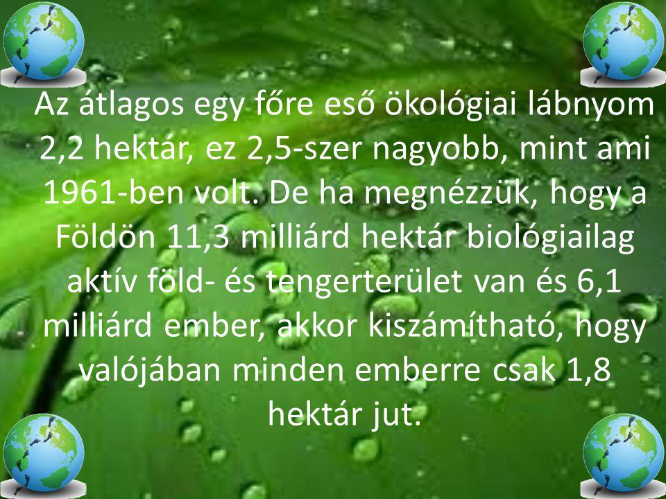 Az átlagos egy főre eső ökológiai lábnyom 2,2 hektár, ez 2,5-szer nagyobb, mint ami 1961-ben volt. De ha megnézzük, hogy a Földön 11,3 milliárd hektár