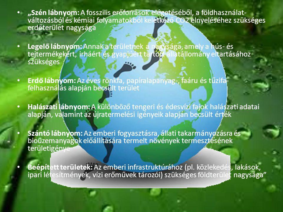 """• """"Szén lábnyom: A fosszilis erőforrások elégetéséből, a földhasználat- változásból és kémiai folyamatokból keletkező CO2 elnyeléséhez szükséges erdőt"""