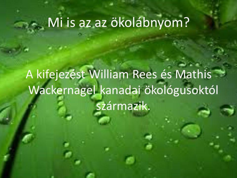 Mi is az az ökolábnyom? A kifejezést William Rees és Mathis Wackernagel kanadai ökológusoktól származik.