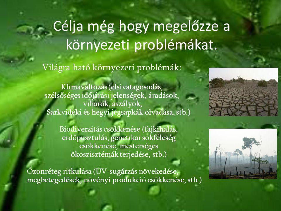 Célja még hogy megelőzze a környezeti problémákat. Világra ható környezeti problémák: Klímaváltozás (elsivatagosodás, szélsőséges időjárási jelenségek