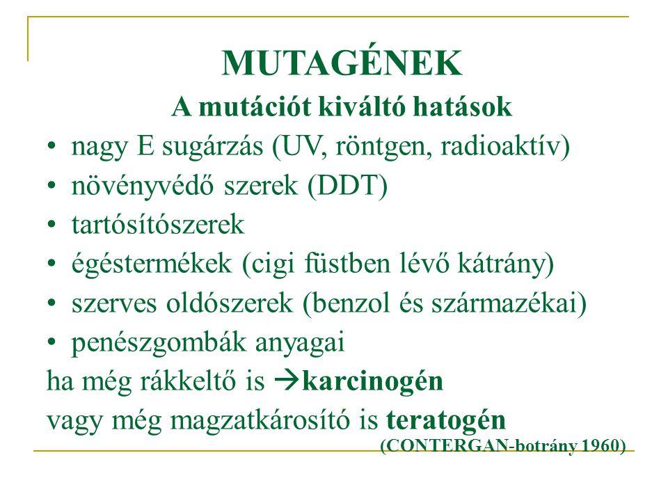 MUTAGÉNEK A mutációt kiváltó hatások •nagy E sugárzás (UV, röntgen, radioaktív) •növényvédő szerek (DDT) •tartósítószerek •égéstermékek (cigi füstben