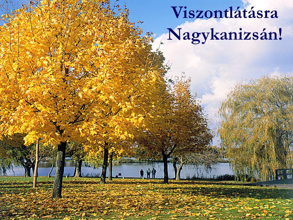 Viszontlátásra Nagykanizsán!