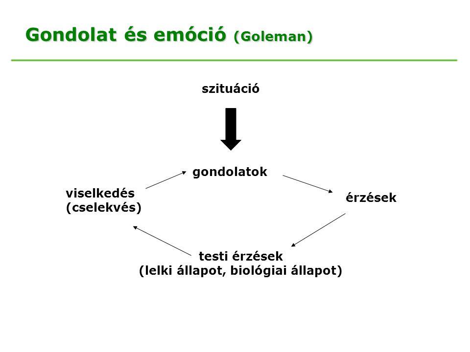 szituáció gondolatok viselkedés (cselekvés) érzések testi érzések (lelki állapot, biológiai állapot) Gondolat és emóció (Goleman)