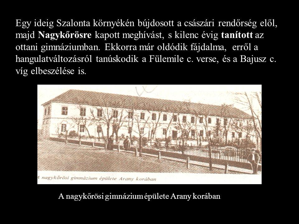 Egy ideig Szalonta környékén bújdosott a császári rendőrség elől, majd Nagykőrösre kapott meghívást, s kilenc évig tanított az ottani gimnáziumban.