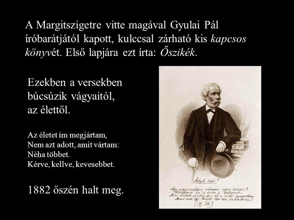 A Margitszigetre vitte magával Gyulai Pál íróbarátjától kapott, kulccsal zárható kis kapcsos könyvét.