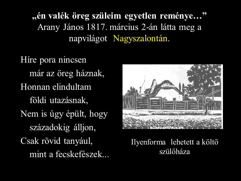 Családfája V..János JuliannaJulianna Juliska László Piroska ErcseyMegyeri Sára Arany György
