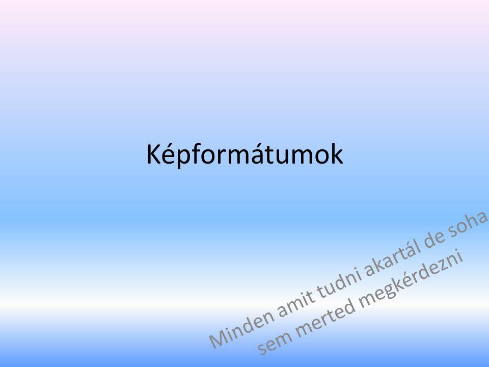 Digitális képformátumok • multimédiás eszköz • képkódolási eljárások • képek tárolására és továbbítására szolgál • két igen eltérő formátum – bittérképes – vektorgrafikus