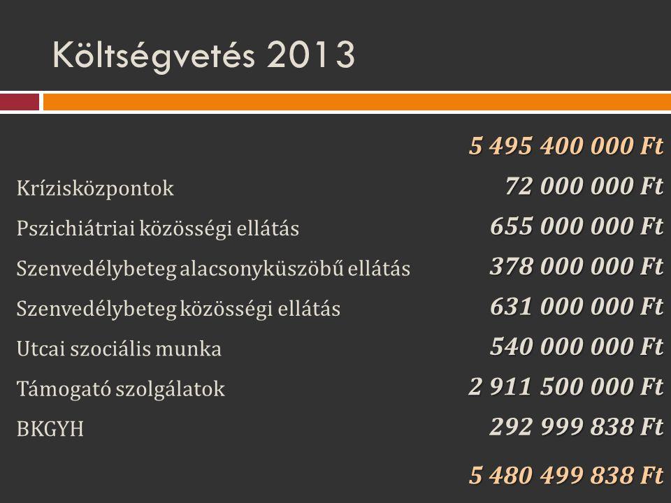 Költségvetés 2013 5 495 400 000 Ft Krízisközpontok 72 000 000 Ft Pszichiátriai közösségi ellátás 655 000 000 Ft Szenvedélybeteg alacsonyküszöbű ellátá
